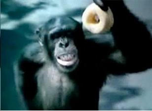 Monkeydonut